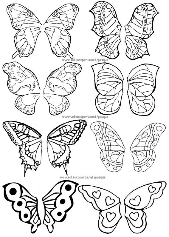 Uova farfalla sottocoperta net for Immagini farfalle da ritagliare