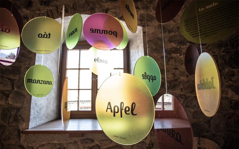 Dal frutto alla carta: la mela
